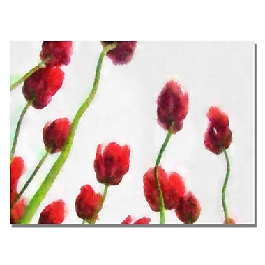 Trademark Fine Art Michelle Calkins 'Red Tulips from Bottom Up IV' Canvas Art