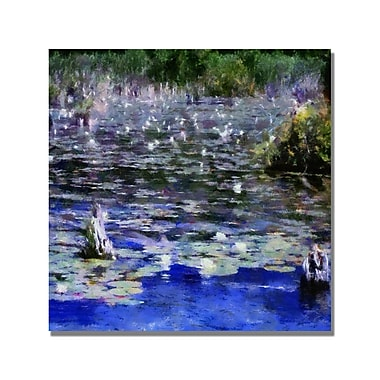 Trademark Fine Art Michelle Calkins 'Water Lilies in the River' Canvas Art