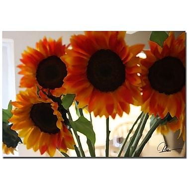 Trademark Fine Art Martha Guerra 'Sunflower X' Canvas Art