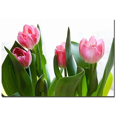 Trademark Fine Art Martha Guerra 'Pink Bouquet' Canvas Art