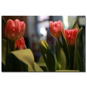 Trademark Fine Art Martha Guerra 'Pink Tulip IV' Canvas Art