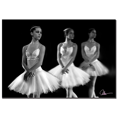 Trademark Fine Art Martha Guerra 'Ballet' Canvas Art, MG042-C2632GG
