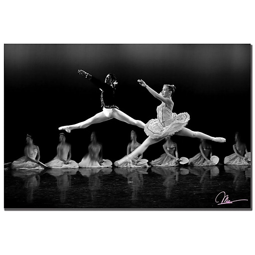 Trademark Fine Art Martha Guerra 'Ballet II' Canvas Art