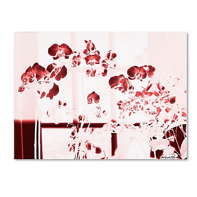 Trademark Fine Art Miguel Paredes 'Red Orchids' Canvas Art 18x24 Inches