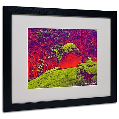 Trademark Fine Art Miguel Paredes 'Enchanted Rock I' Matted Art Black Frame 16x20 Inches