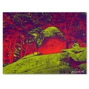 Trademark Fine Art Miguel Paredes 'Enchanged Rock I' Canvas Art