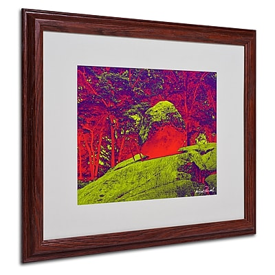Miguel Paredes 'Enchanted Rock I' Matted Framed Art - 16x20 Inches - Wood Frame
