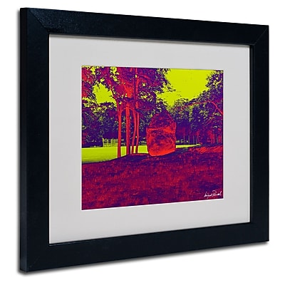 Trademark Fine Art Miguel Paredes 'Enchanged Rock II' Matted Art Black Frame 11x14 Inches