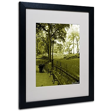 Trademark Fine Art Miguel Paredes 'Pines IV' Matted Art Black Frame 16x20 Inches