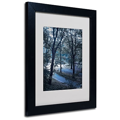Trademark Fine Art Miguel Paredes 'Snow Flakes' Matted Art Black Frame 11x14 Inches