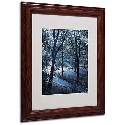 Miguel Paredes 'Snow Flakes' Matted Framed Art - 11x14 Inches - Wood Frame