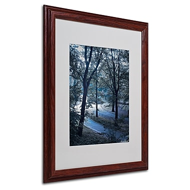 Miguel Paredes 'Snow Flakes' Matted Framed Art - 16x20 Inches - Wood Frame