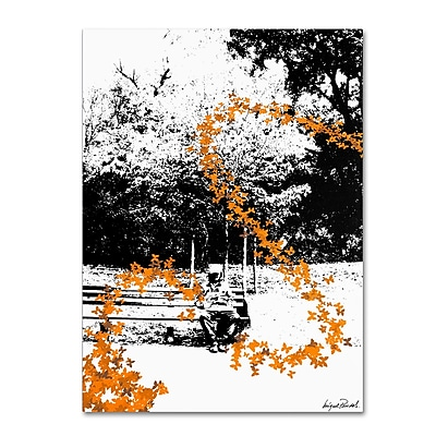 Trademark Fine Art Miguel Paredes 'Orange Butterflies' Canvas Art 14x19 Inches