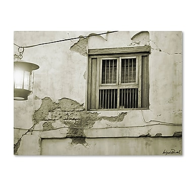 Trademark Fine Art Miguel Paredes 'Window' Canvas Art 35x47 Inches