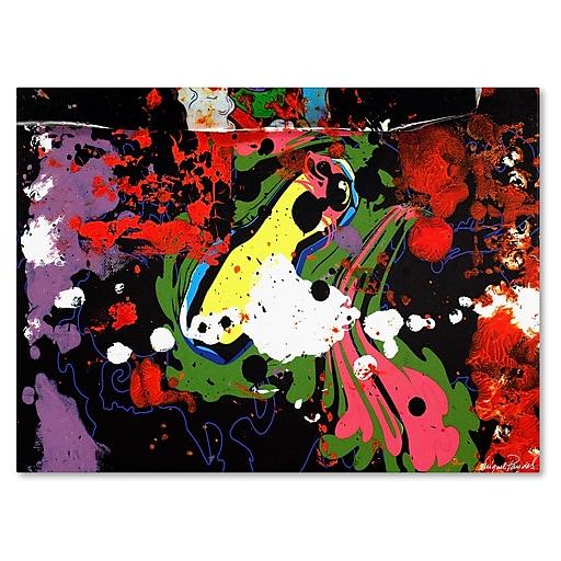 Trademark Fine Art Miguel Paredes 'Fisheye' Canvas Art 22x32 Inches