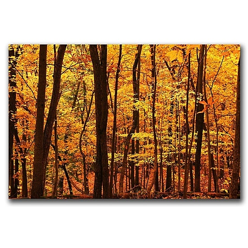 Trademark Fine Art Delicious Autumn by CATeyes-Canvas Art Ready to Hang 22x32 Inches