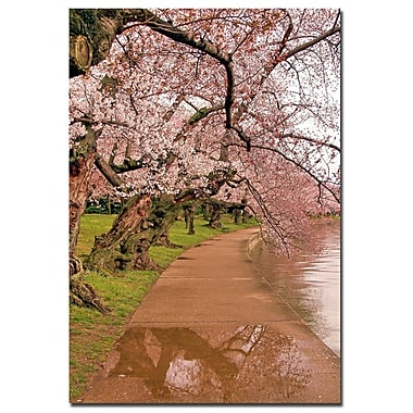 Trademark Fine Art CATeyes 'Around our Paths' Canvas Art