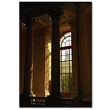 Trademark Fine Art CATeyes 'Into the Light' Canvas Art
