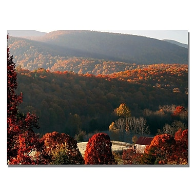 Trademark Fine Art MCat 'Glorious Greeting' Canvas Art