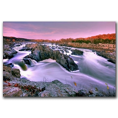 Trademark Fine Art Everything Flows by CATeyes Canvas Ready to Hang 16x24 Inches