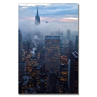 Trademark Fine Art CATeyes 'American Spirit' Canvas Art 16x24 Inches