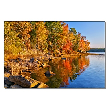 Trademark Fine Art CATeyes 'Early Morning' Canvas Art 16x24 Inches