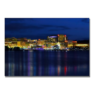 Trademark Fine Art CATeyes 'Night' Canvas Art 16x24 Inches