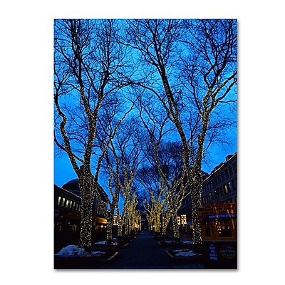 Trademark Fine Art CATeyes 'Boston 2' Canvas Art 30x47 Inches