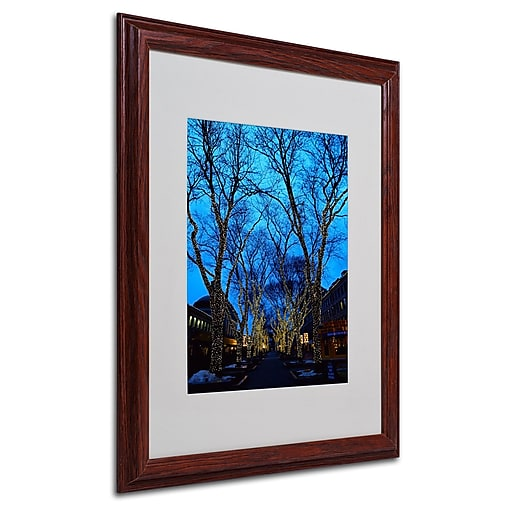 CATeyes 'Boston 2' Matted Framed Art - 16x20 Inches - Wood Frame