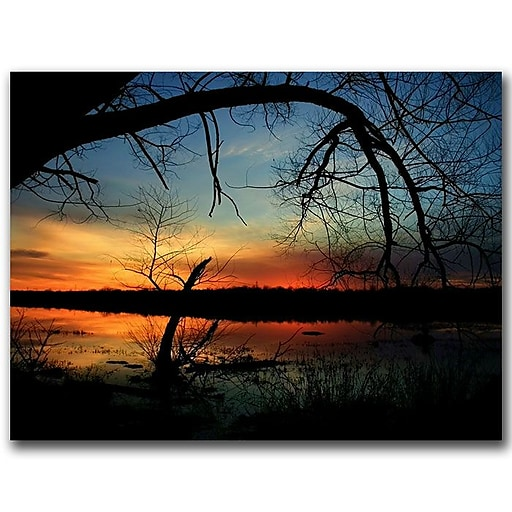 Trademark Fine Art Luminous Essence by CATeyes Canvas Ready to Hang 18x24 Inches