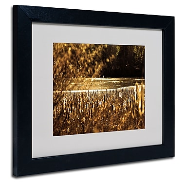 Trademark Fine Art CATeyes 'Boston 6' Matted Framed Art