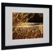 Trademark Fine Art CATeyes 'Boston 6' Matted Art Black Frame 16x20 Inches