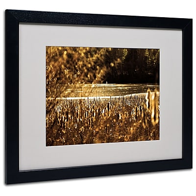 Trademark Fine Art CATeyes 'Boston 6' Matted Art Black Frame 16x20 Inches