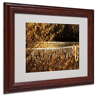 CATeyes 'Boston 6' Matted Framed Art - 11x14 Inches - Wood Frame