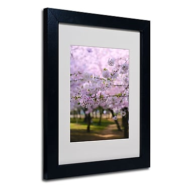 Trademark Fine Art CATeyes 'DC 2' Matted Art Black Frame 11x14 Inches
