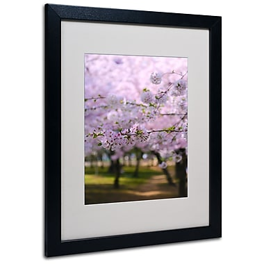 Trademark Fine Art CATeyes 'DC 2' Matted Art Black Frame 16x20 Inches