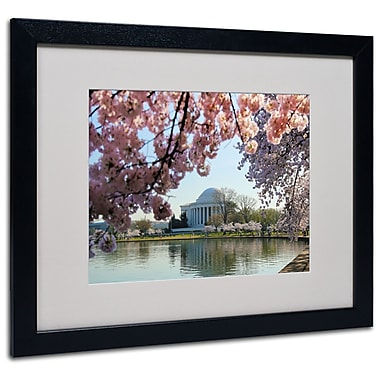 Trademark Fine Art CATeyes 'DC 3' Matted Art Black Frame 16x20 Inches