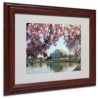 CATeyes 'DC 3' Matted Framed Art - 11x14 Inches - Wood Frame