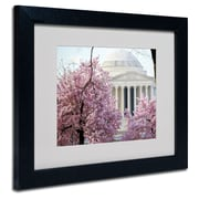Trademark Fine Art CATeyes 'DC 4' Matted Art Black Frame 11x14 Inches
