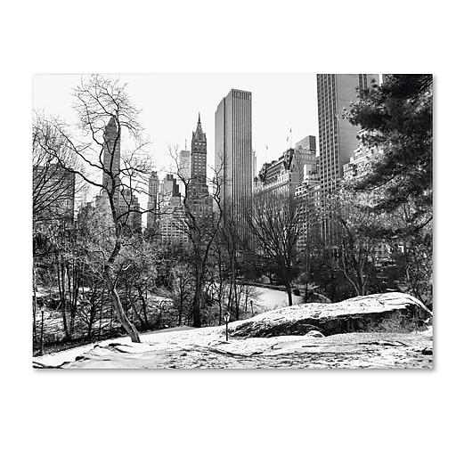 Trademark Fine Art CATeyes 'Central Park' Canvas Art 22x32 Inches