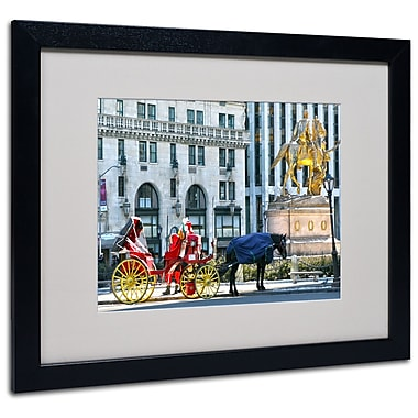 Trademark Fine Art CATeyes 'Central Park 2' Matted Art Black Frame 16x20 Inches