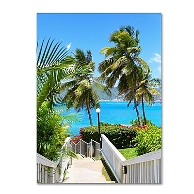 Trademark Fine Art CATeyes 'Virgin Islands 3' Canvas Art 16x24 Inches