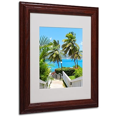 CATeyes 'Virgin Islands 3' Matted Framed Art - 11x14 Inches - Wood Frame