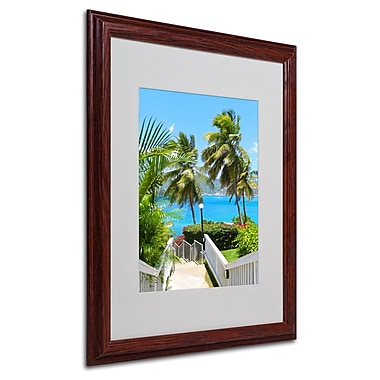 CATeyes 'Virgin Islands 3' Matted Framed Art - 16x20 Inches - Wood Frame