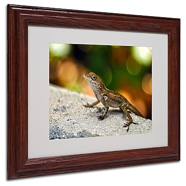 CATeyes 'Virgin Islands 4' Matted Framed Art - 11x14 Inches - Wood Frame