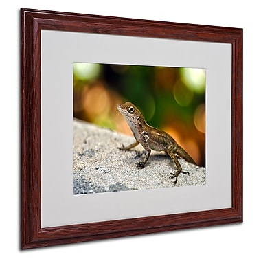 CATeyes 'Virgin Islands 4' Matted Framed Art - 16x20 Inches - Wood Frame
