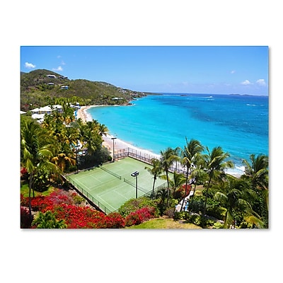Trademark Fine Art CATeyes 'Virgin Islands 5' Canvas Art 30x47 Inches