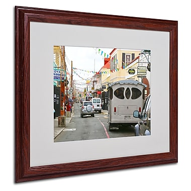CATeyes 'Virgin Islands 7' Matted Framed Art - 16x20 Inches - Wood Frame