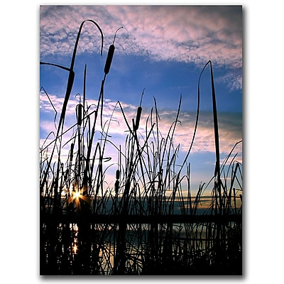 Trademark Fine Art Dreams by CATeyes Canvas Art Ready to Hang 18x24 Inches