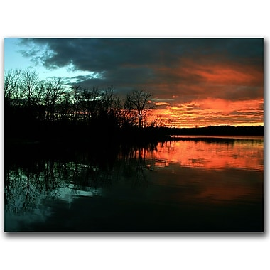Trademark Fine Art CATeyes 'Life' Canvas Art Ready to Hang 35x47 Inches